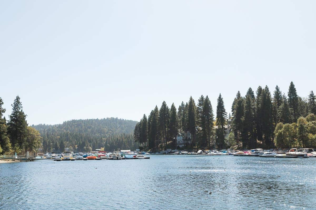 Lake Arrowhead Cabin Backyard Remodel Image