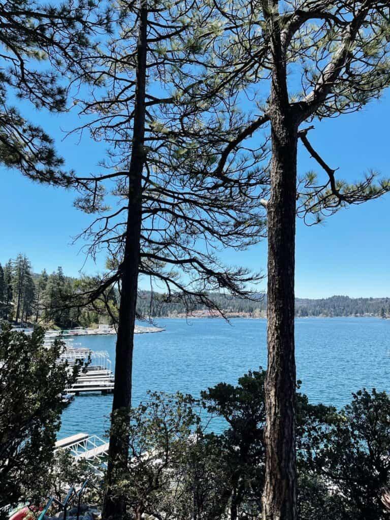Lake Arrowhead Vacation Rental - The MGD Log